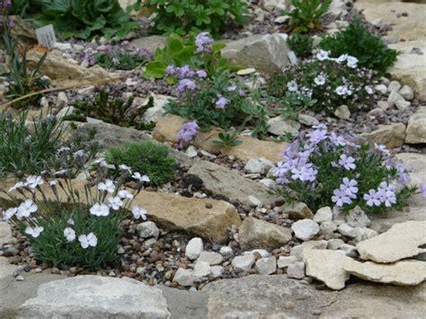 steingarten anlegen und bepflanzen gestaltungsideen f 252 r