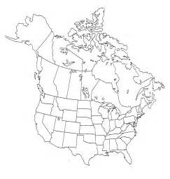 blank map of the united states and canada us and canada