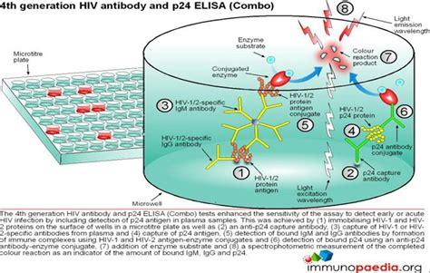 test elisa hiv immunology diagnostic tests immunopaedia