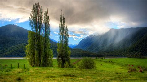 new wallpaper new zealand wallpapers best wallpapers