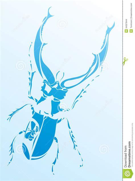 cervo volante insetto cervo volante dell insetto immagini stock immagine 34327844