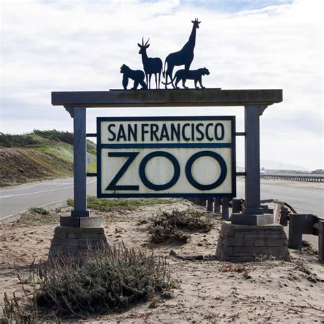 San Francisco Zoo Coupon 2017 2018 Best Cars Reviews Related Keywords Suggestions For Los Angeles Zoo Tickets