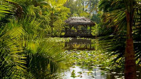 bonnet house museum gardens bonnet house museum and gardens in fort lauderdale florida expedia