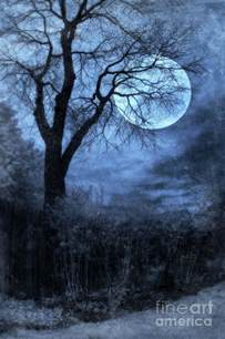Branches Duvet Cover Full Moon Through Bare Trees Branches Photograph By Jill