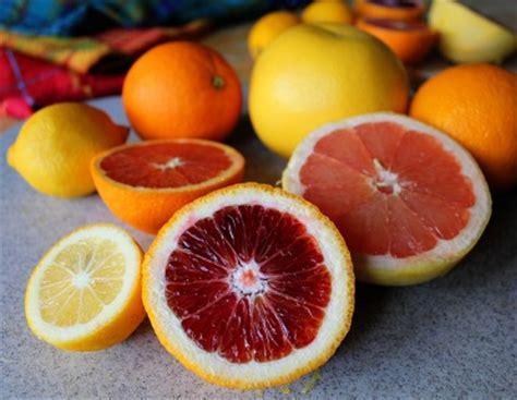 4 fruit marmalade four fruit marmalade without pectin