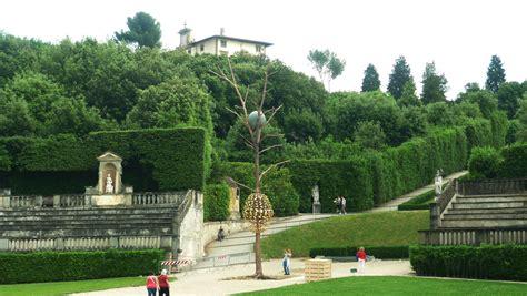 giardino boboli pianta gli alberi dello scultore giuseppe penone si alzano nel