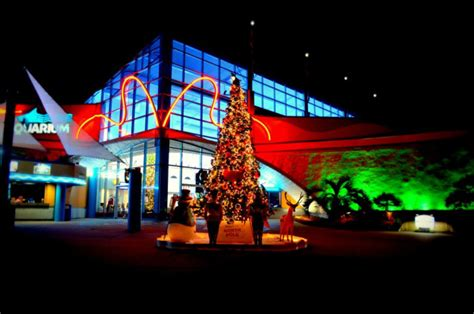 best christmas displays north myrtle beach top 15 south carolina towns
