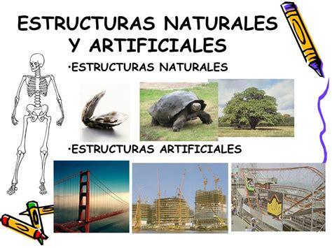 imagenes de estructuras naturales estructuras las estructuras y sus aplicaciones ppt video online