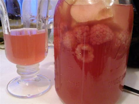 fruit kvass the healthy family chronicles fruit quot kvass quot my newest