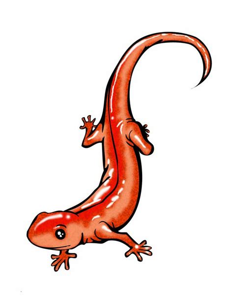 salamander tattoo designs salamander by mth1022 on deviantart