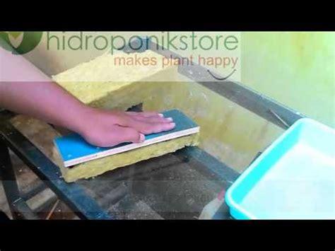 Pupuk Ab Mix Alami cara semai benih dengan cepat dan mudah hidrafarm