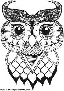 owl coloring pages for adults free coloring pages of owls adults