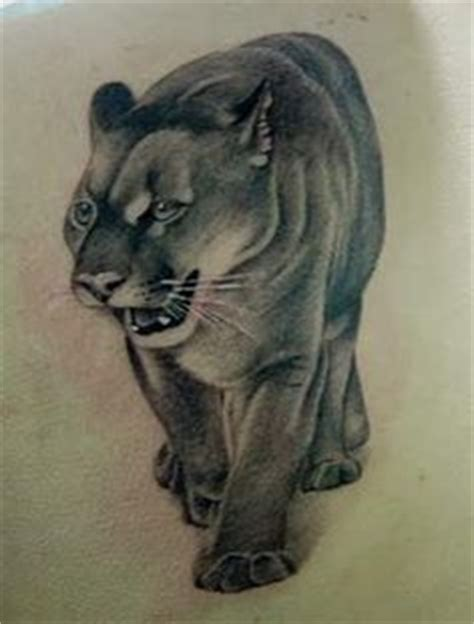 cougar mountain lion tattoo designs 1000 images about penn state on mountain