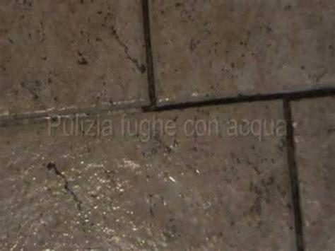 pulisci pavimenti a vapore pulizia fughe piastrelle vapore con biocleaner doovi