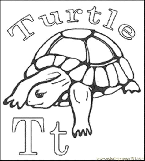 free coloring pages of painted turtle