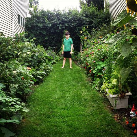 Permaculture Vegetable Garden 52215 Permaculture Backyard Food Forest Garden Update