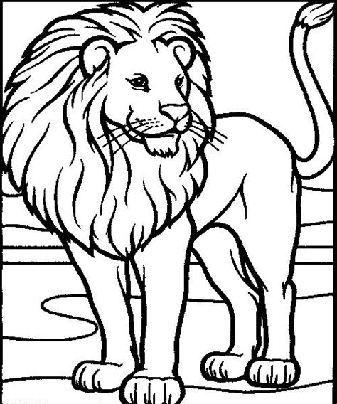 coloring pages lions tigers lion coloring pages to print lion color page tiger