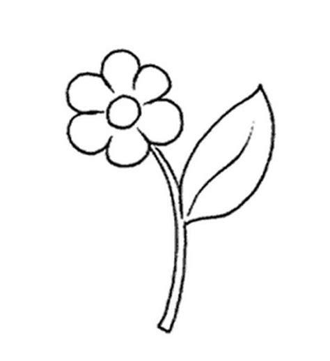 fiore disegno l usignolo disegni fiori da colorare