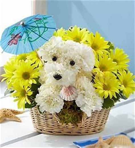 puppy bouquet 78 images about and animal flower arrangements on floral arrangements