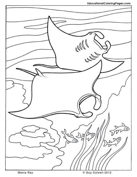 coloring pages of sea world sea world coloring pages az coloring pages