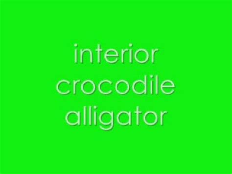 Interior Crocodile Alligator Vine by Dj Khaled Tourist Ft Travis Lil Wayne