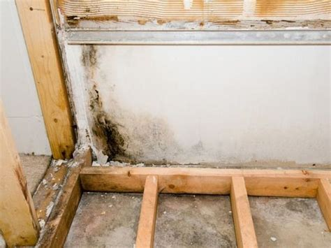 basements diy network and home improvements on