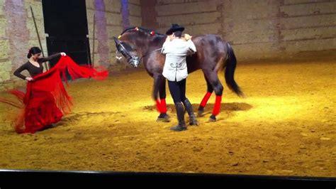 animalismo mujer folia con caballo baile entre mujer y caballo pura sangre espa 241 ol