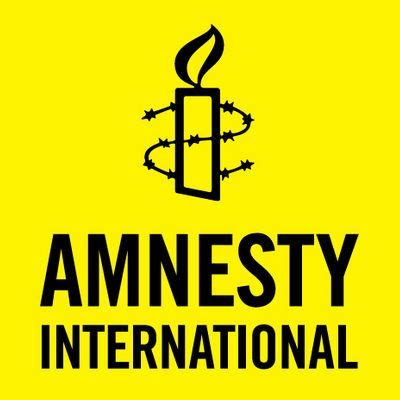 amnesty international faults army report on human rights