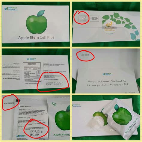 Jual Rwp Apple Stem Cell Plus With Collagen L Glutathione jual apple stem cell plus cnc shop