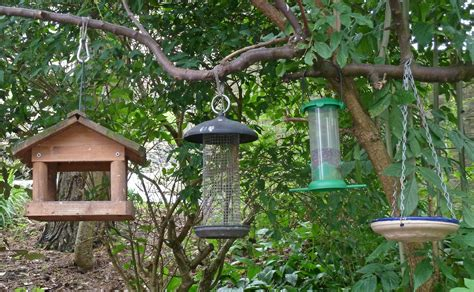types of bird feeders welcome wildlife