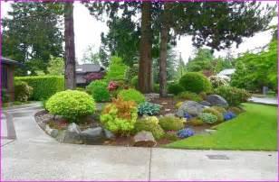 Low maintenance front yard landscape ideas home design ideas