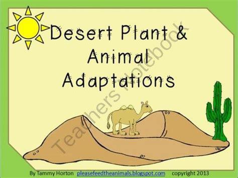 succulents plants adaptations for kids best 25 desert biome plants ideas on pinterest desert