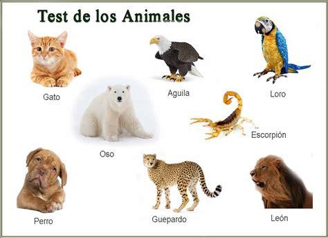 test animali de todo un poco test de los animales