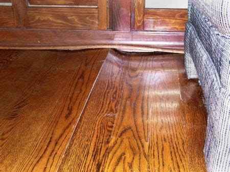 How to Keep Your Hardwood Floors from Buckling   Angie's List