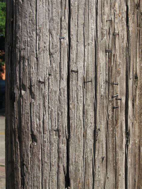 Wood Paneling Texture wood telephone pole post grunge grunge texture for me
