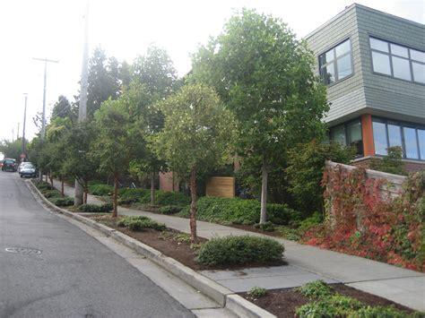 Seattle School Address Lookup Seattle Country Day School Seattle Civil Engineering Mayfly Engineering Design