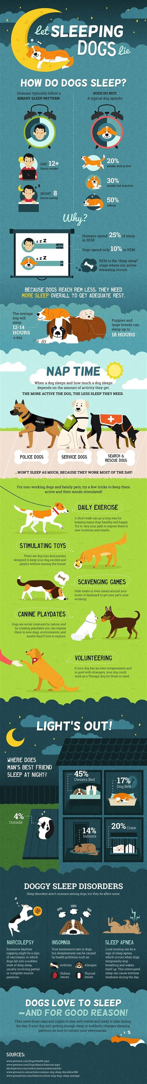 how much sleep does a 4 month puppy need how much sleep does your need infographic treats happen