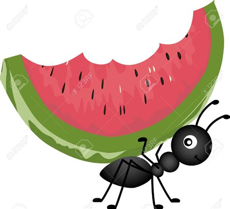 picnic clipart picnic food ant carrying watermelon illustration girly