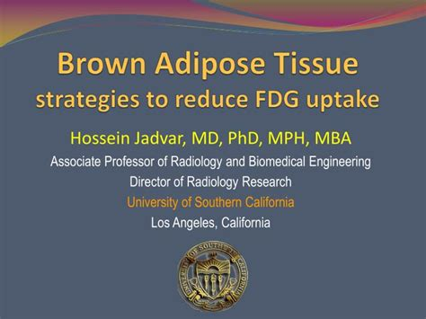 Phd Mph Mba by Ppt Brown Adipose Tissue Strategies To Reduce Fdg Uptake