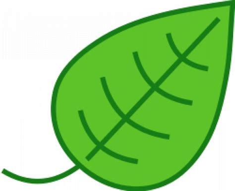 imagenes de hojas verdes solas hoja simple descargar vectores gratis