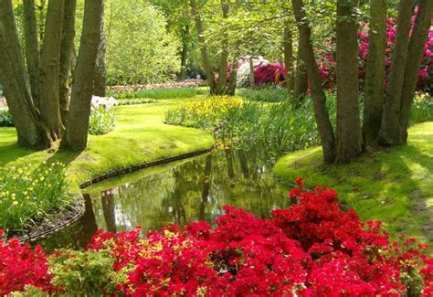 Largest Flower Garden World S Largest Flower Garden Keukenhof Netherlands