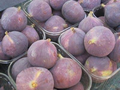 cuisiner les figues 17 best images about cuisiner les figues on