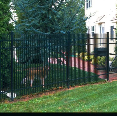 puppy guard fence 9 best images about puppy fence on the o jays puppys and style