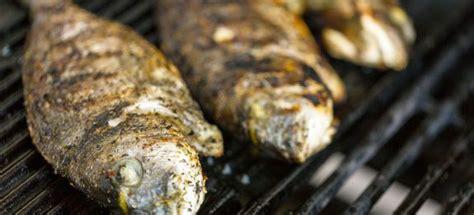 cucinare pesce al barbecue come cucinare pesce al barbecue cucinarepesce