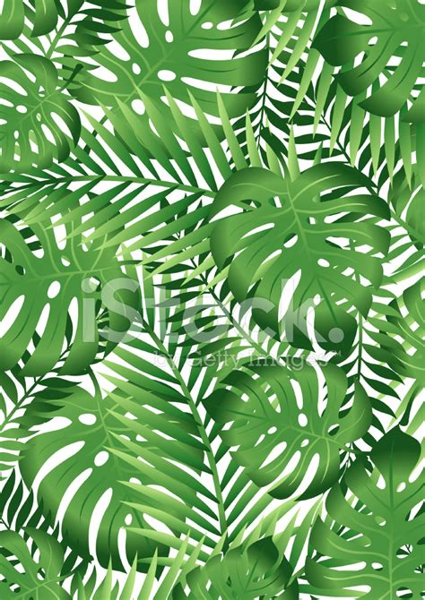 wallpaper tropical green green tropical leaves stock vector freeimages com