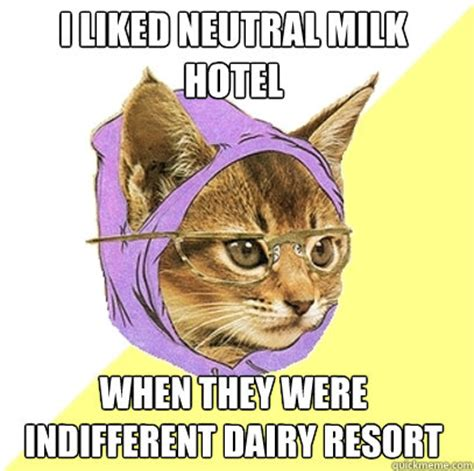 Hipster Kitty Meme - i liked neutral milk hotel when they were indifferent