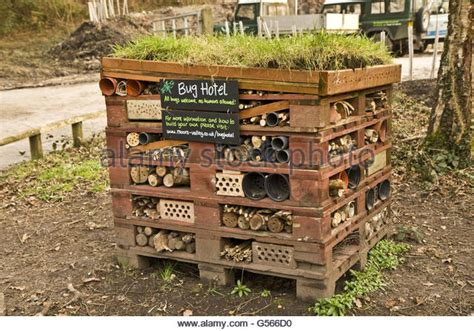 bed bugs hotel bug hotels stock photos bug hotels stock images alamy