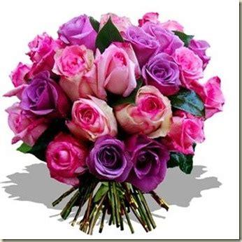 imagenes de flores gratis image gallery imagenes de flores gratis