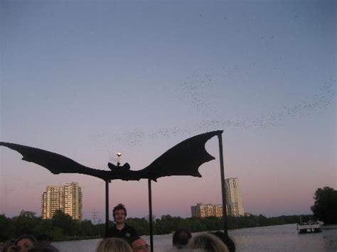 bat boat austin bats leaving the congress st bridge picture of