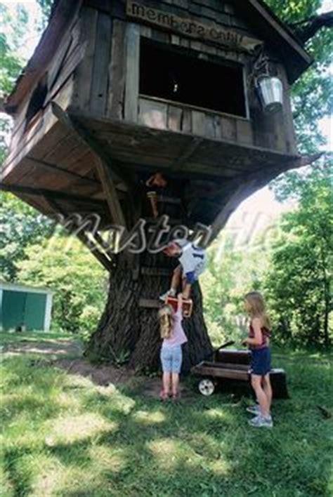 Mein Schoener Garten 4466 by Clever Use Of A Large Tree Stump In A Backyard In Boise S